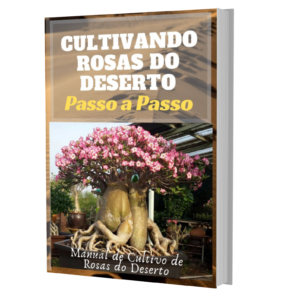 Manual de Cuidados com Rosas do Deserto